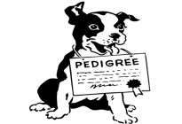 Dog-Pedigree-2